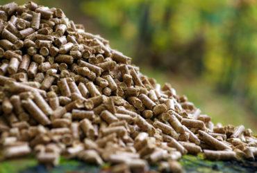 El uso de pellets redujo en un año la contaminación equivalente a 46.000 vehículos